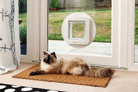 essential guide to cat doors for windows sliding glass doors