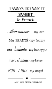 best french phrases ideas phrases in french  french more