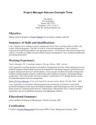 Resume Examples Resume Writing Objective Statement Example Of