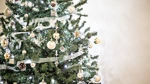 Want a real Christmas tree? Start looking now