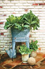 Container Garden Plans Flowers  Home Outdoor DecorationContainer Garden Ideas For Fall