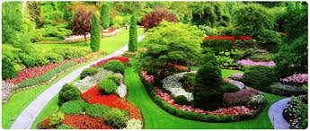 best garden plants. Colorful Landscape Shrubs Greengardendesignwithcolorful Plus Best Plants For Gardens Inspirations Garden