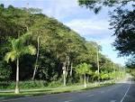 imagem de Ipatinga Minas Gerais n-7