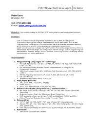 Gallery Of Pl Sql Developer Resume Example Inspirational oracle Pl Sql  Developer Resume Doc