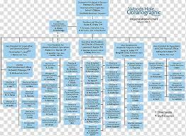 Organizational Chart Non Profit Organisation Organizational