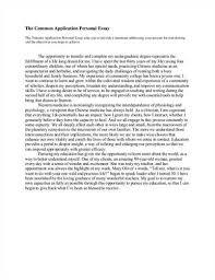 best mba essay ghostwriting websites us best resume objective american civil war essay writing service for you essay on civil american civil war essay writing