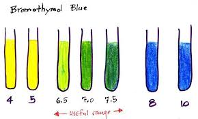 Phenol Red Colour Chart Ph Indicator Solutions