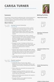 26 Resume Format For Accounts Executive Picture Best Resume Templates