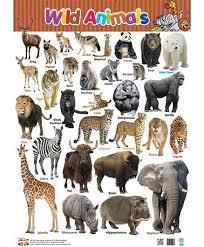 Wild Animals Chart English