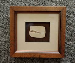 Types of picture framing Different Types Our Show Floor Offers Wide Array Of Frame Sizes Styles And Types Accompanied By Wide Selection Of Affordable Precut Mats Granite Photo Granite Photo Custom Framing