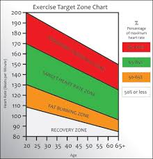 Cardio Training Zone Chart Training Zone Heart Rate Online Collages Mba Masters
