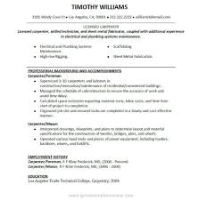 Plumber Resume Carpenter Job Description For Resume Writing Resume Sample in 77