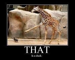 Giraffe Quotes New Astute Giraffe Funny Pictures Quotes Pics Photos Images