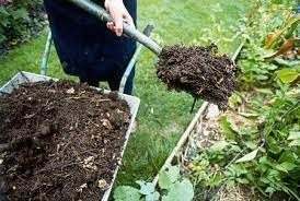 compost for the lawn