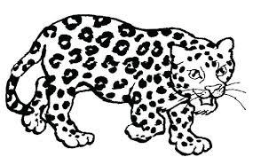 Jaguar Coloring Sheet