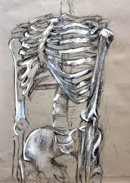 open double door drawing. Clara Lieu, Skeleton Drawing Assignment, Conte Crayon On Toned Paper, RISD Project Open Door, Double Door