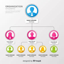 Organization Chart Vectors Photos And Psd Files Free Download
