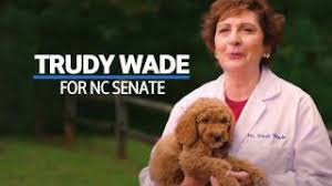Trudy Wade - Puppies :30