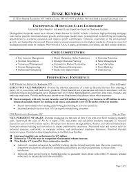 Executive Resume Samples Best Jesse Template 2017 232