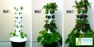 aeroponic garden tower reviews luxury 5 research backed benefits of aeroponic gardening tower garden