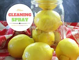 citrus antibacterial cleaner spray recipe