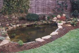 Small Picture A Personal Guide to Building and Maintaining a Garden Pond