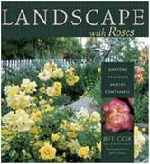 Small Picture Planning and Designing your Rose garden