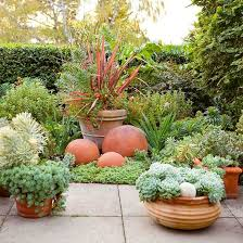 simple landscape design succulent