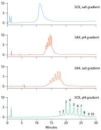 Ion Exchange Chromatography Ph Gradient Elution Conditions