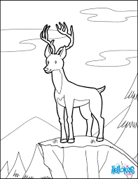 Color Online This Deer Coloring Page