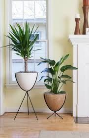 Accessories: Ikea Ladder Multi Plant Stand - Indoor Plant Stands
