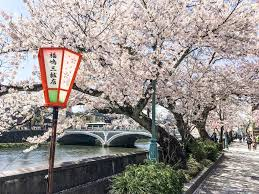 26 Most <b>Beautiful</b> Places in <b>Japan</b> that you should include in your ...