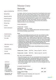 Bar Back Resume Node2003 Cvresume Paasprovider Com