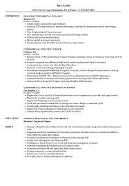 Commercial Finance Manager Sample Resume Commercial Finance Resume Samples Velvet Jobs 14