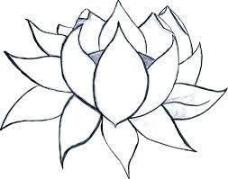 Flower Color Pages Flower Coloring Pages Combined With Flower