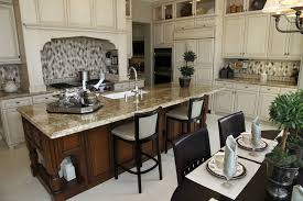 florida kitchen design ideas. enchanting large kitchen cabinets and 64 deluxe custom island designs beautiful florida design ideas