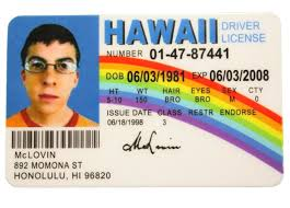 Nostalgia Mclovin - American Id Card