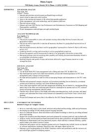 Gis Resume Template Pleasant Gis Analyst Resume Templates In Sample Striking Format 8