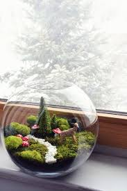 fairy garden terrarium. Fine Garden Fairy Garden Terrarium Throughout Garden Terrarium I