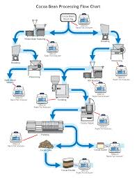 Cocoa Bean Production Process