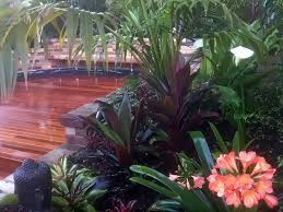 Small Picture tropical garden design brisbane Margarite gardens