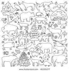 Forest Animal Coloring Page Forest Animal Coloring Pages Doodle Forest Animals Plants Coloring