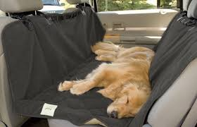 what to look for in a new dog car seat cover