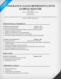Sales Resume Examples Simple Sample Sales Resumes Lovely Insurance Sales Resume Example