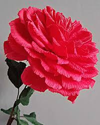 Red Paper Flower Hybrid Tea Rose Large