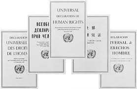 ООН on Twitter: