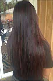 fashion dark brown hairstyles exceptional hair colours for asians fresh hair colour highlights for brown