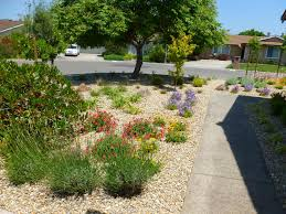 Low Maintenance Front Yard Rolitz With Landscaping Ideas Regard To Garden  Photos Small Best On Pinterest