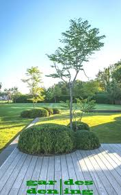 landscaped gardens of the backyard firm