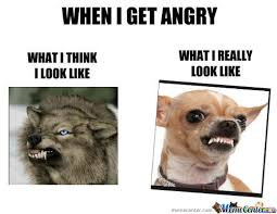 Angry Face Memes. Best Collection of Funny Angry Face Pictures via Relatably.com